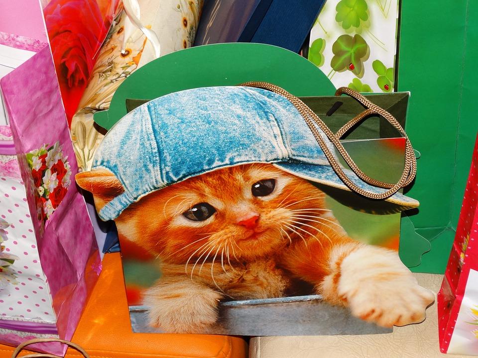 A cicás táska igazán jópofa